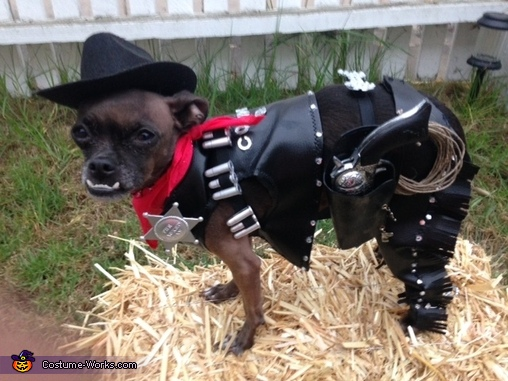 DIY Cowboy Dog Costume