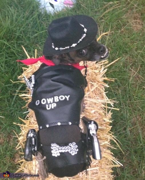 DIY Cowboy Dog Costume