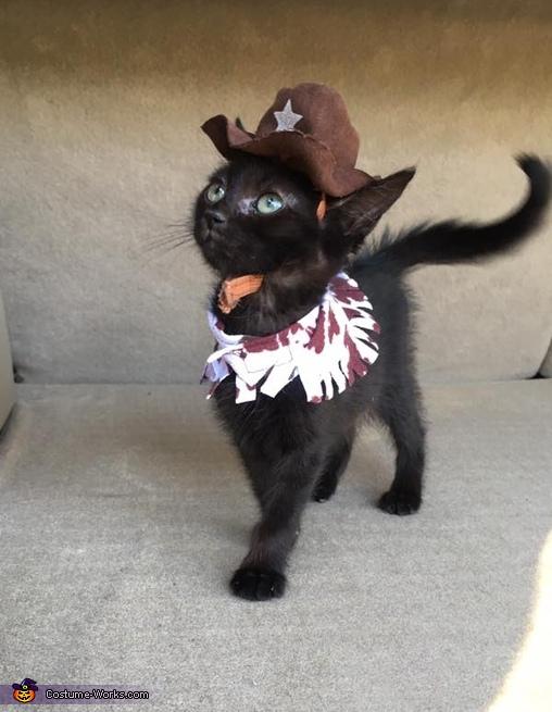 Cowboy Kitten Costume