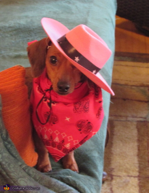 Cowgirl Puff Costume