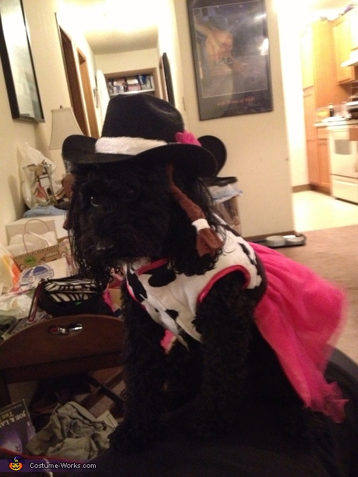 Cowgirl Kiki Costume