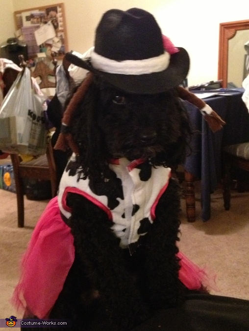Cowgirl Poodle Homemade Costume