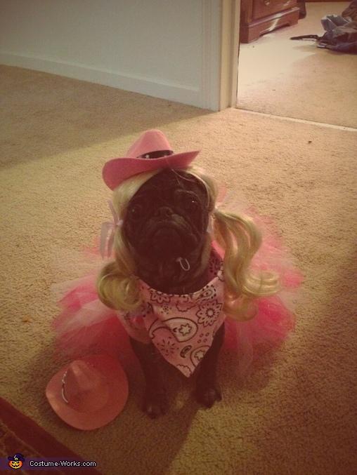 Cowgirl Princess Dog Homemade Costume