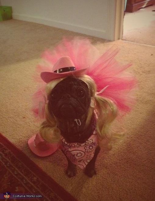 Cowgirl Princess Dog Costume