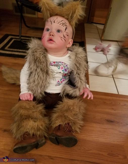 Baby coyot, Coyote Wild Costume