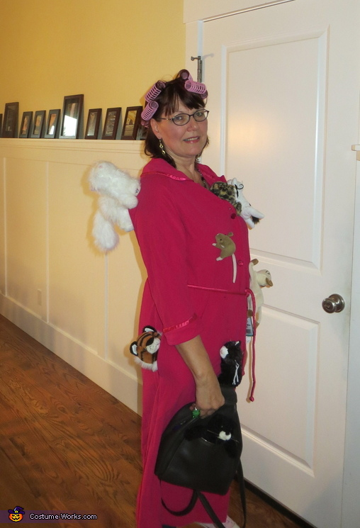 Crazy Cat Lady Homemade Costume