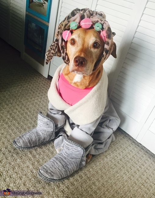 Crazy Cat Pittie Costume