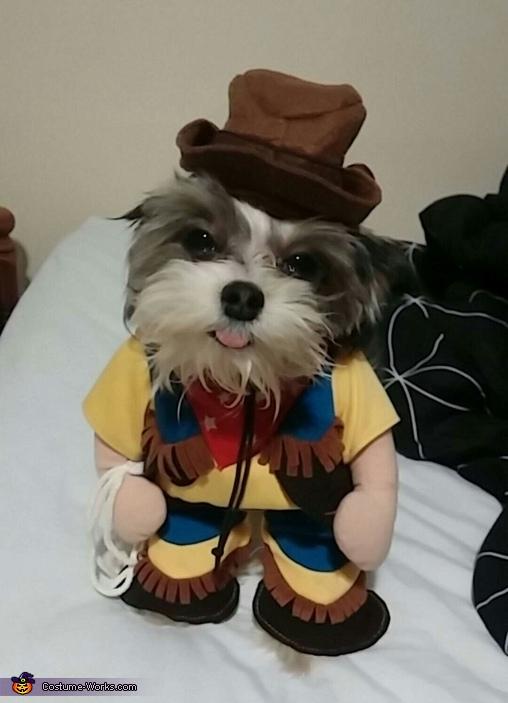 Crazy Cowboy Costume