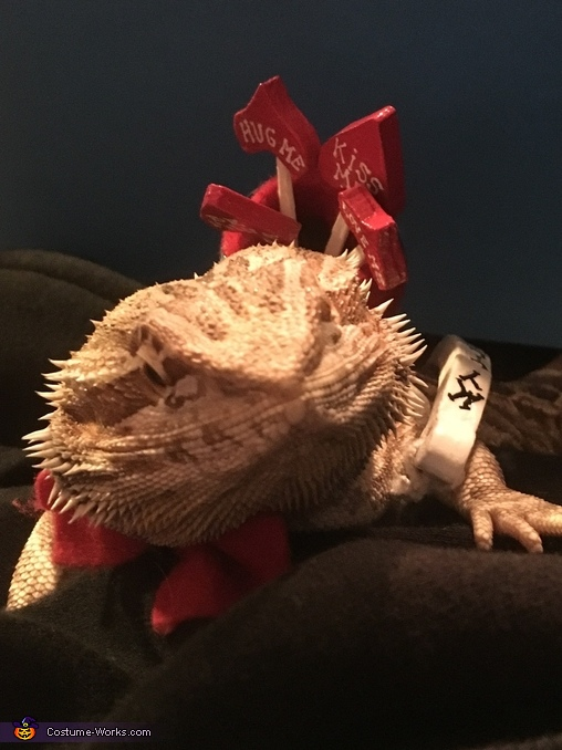 Cupid Bearded Dragon Homemade Costume