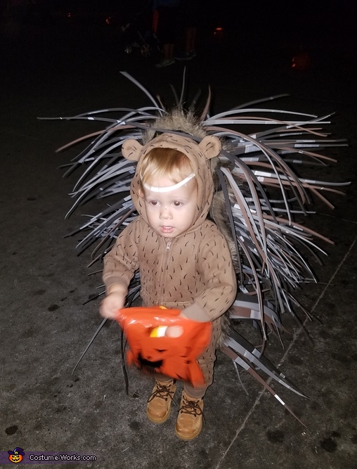Cute Baby Porcupine Costume
