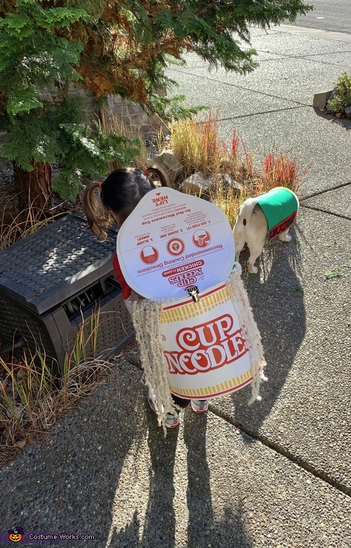 Cute Cup Noodles Homemade Costume