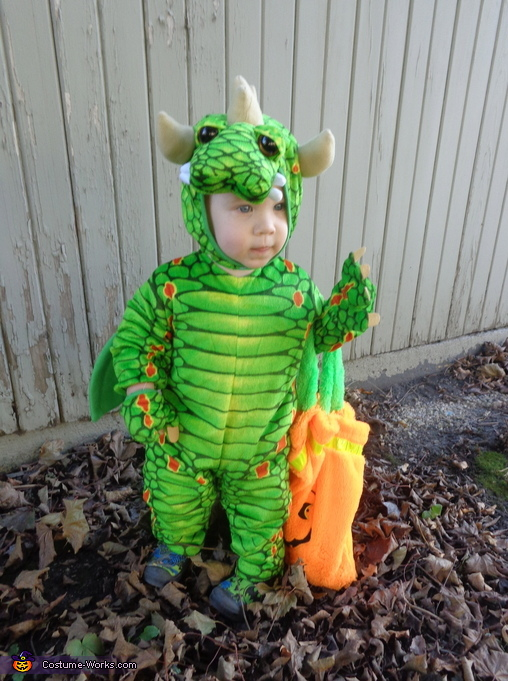 Cute Little Dragon Costume