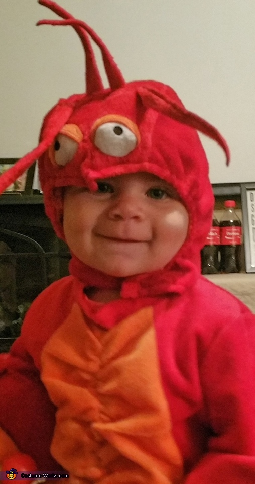 Cute Lobster Costume