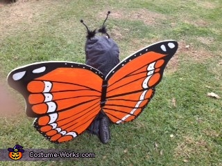 Cute Monarch Butterfly Homemade Costume