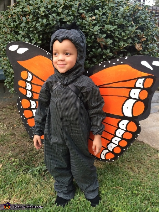 Cute Monarch Butterfly Costume