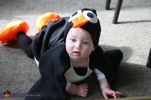 Cute Penguin Baby Costume