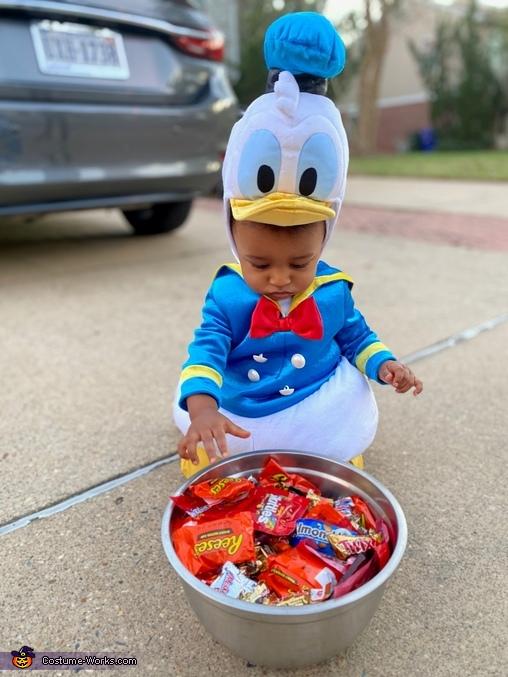 Cutest Donald Duck Costume