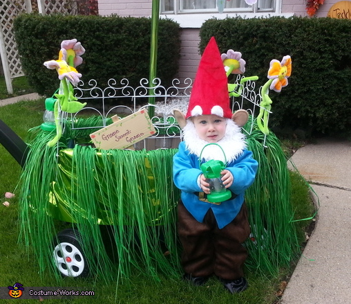 Gnome Sweet Gnome Baby Costume