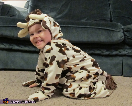 Cutest Little Cow Baby Costume