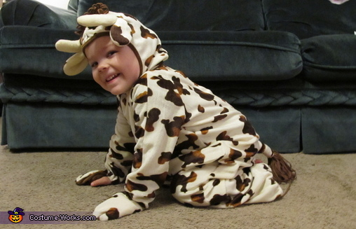 Cutest Little Cow Homemade Costume