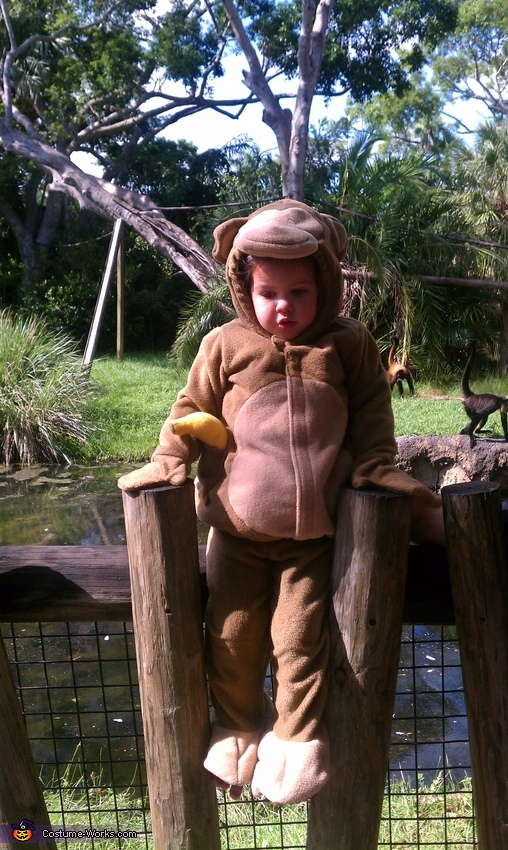 monkey see monkey do!, Cutest Monkey Baby Costume