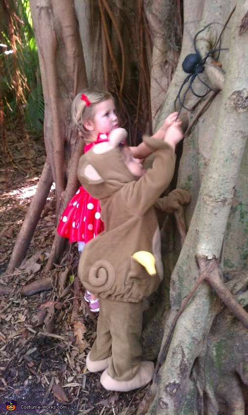 trying to climb up and touch the 'not so itsy' spider!, Cutest Monkey Baby Costume