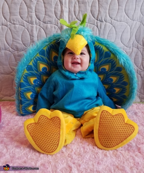 Cutest Peacock in Town Costume