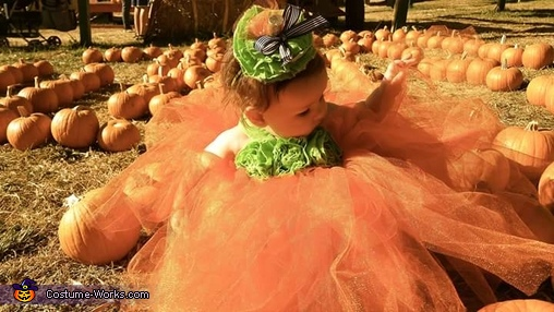 Cutest Pumpkin in the Patch Homemade Costume