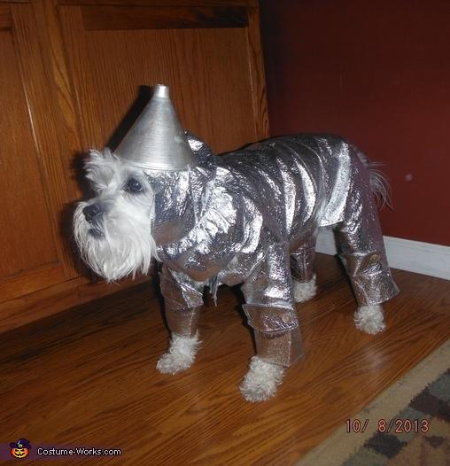 Cutest Tin Man Dog Costume