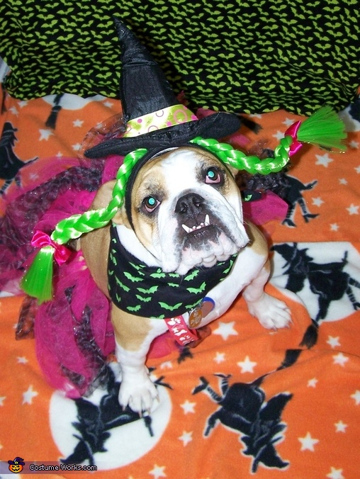 Annabelle the Cutest Witch Costume