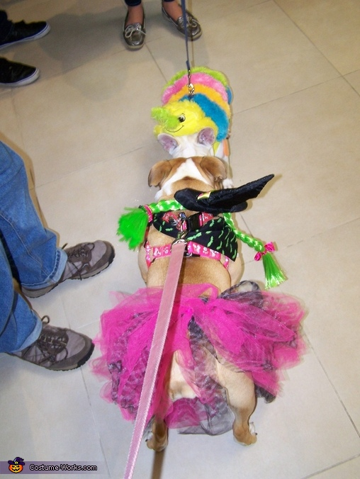 Cutest Witch Dog Homemade Costume