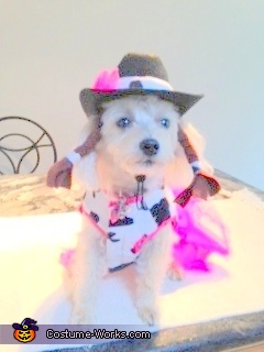 Woof Woof Hi HO Silver, Cutie Patootie Cowgirl Dog Costume