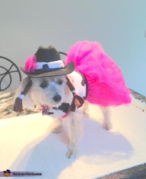 Cutie Patootie Cowgirl Dog Costume