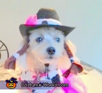 The cutest little cowgirl, Cutie Patootie Cowgirl Dog Costume