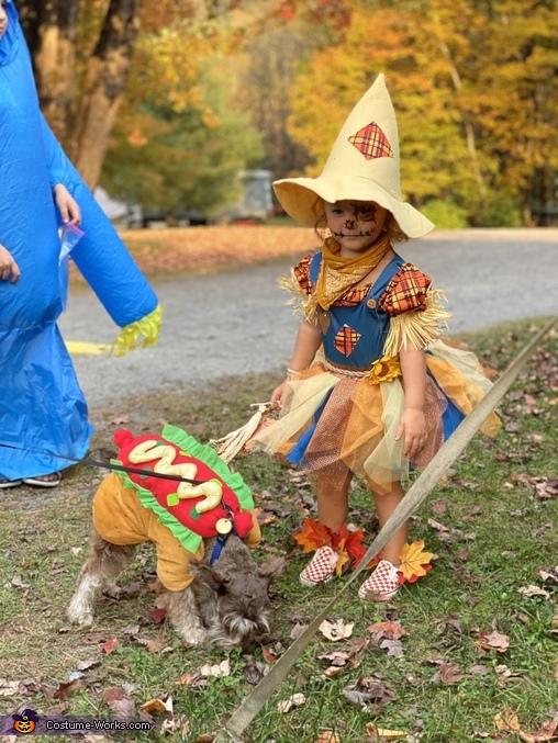 Cutie Scarecrow Homemade Costume