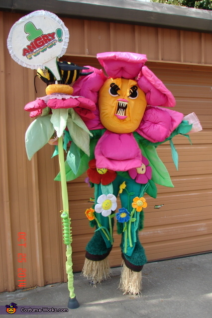 Flower & sign, Daisy Gardeness Costume