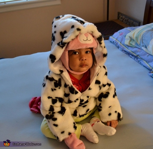 Dalmatian Puppy Costume