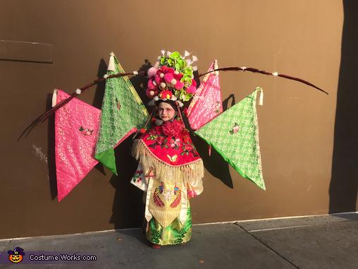 Daomadan Warrior Chinese Opera Homemade Costume