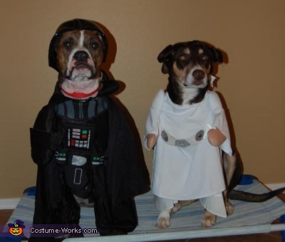 Darth & Leia Dogs Costume