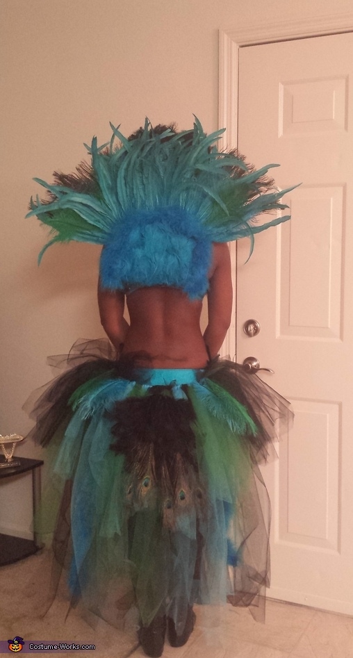 Back snapshot, Dazzling Pretty Peacock Costume