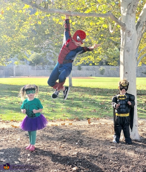 Spidey, hulk, and Batman, DC and Marvel Unite Costume