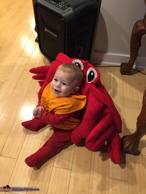 Matthew the King Crab, Deadliest Catch Crew Costume