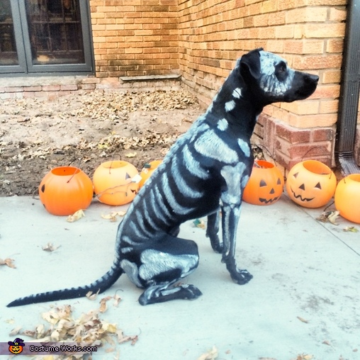 Death Dog Costume