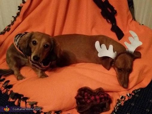 Buck and hunter, Deer Season Costume