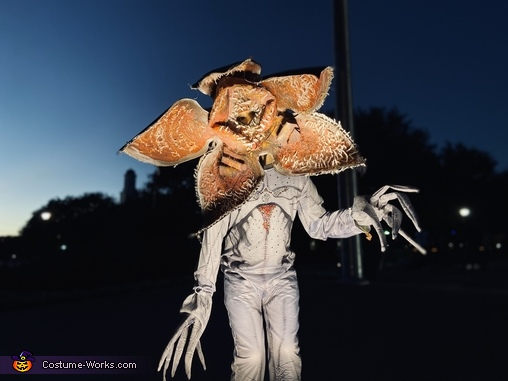 On the prowl at night, Demogorgon Costume