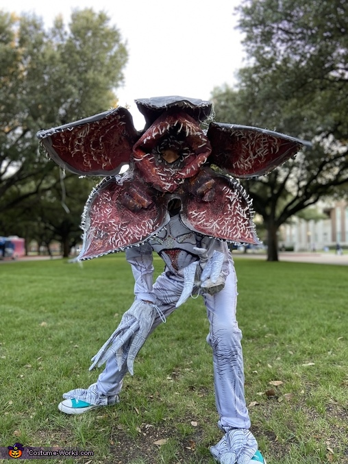 Looking for candy, Demogorgon Costume