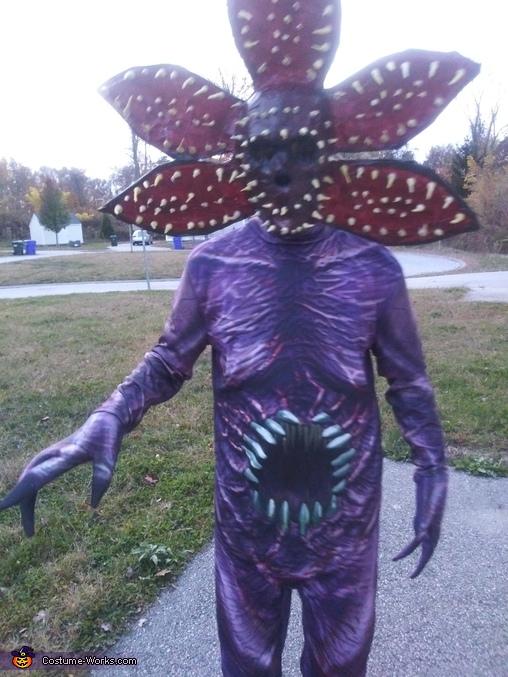 Original pic, Demogorgon Costume