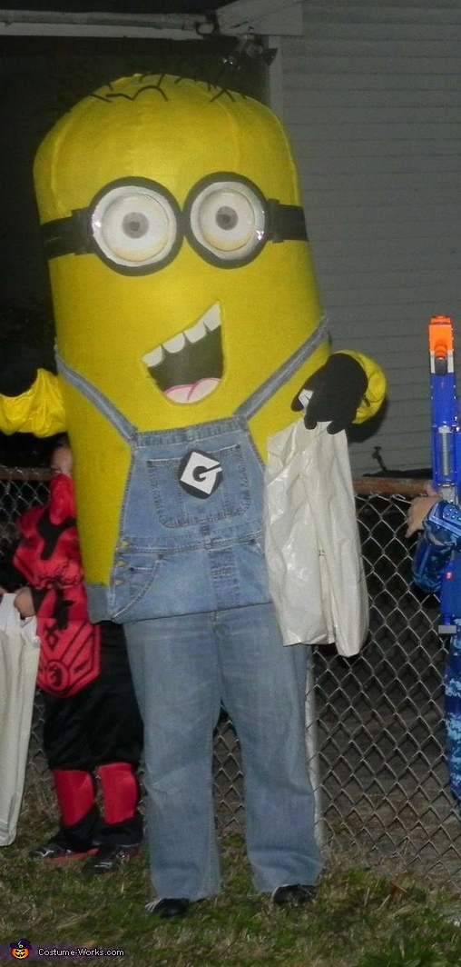 Despicable Me Minion Costume