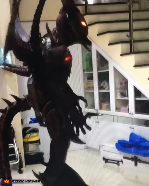 Diablo Homemade Costume