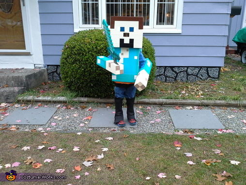Steve second pic, Diamond Minecraft Steve Costume